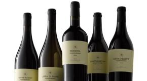 Vino, degustazioni e laboratori per il Mandrarossa Vineyard Tour