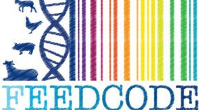Alimentazione, il Consorzio Parmigiano Reggiano partecipa al progetto Feed Code