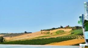 Cantine Aperte da Planeta, da sud ovest a sud est il 29 maggio tra vini e territori