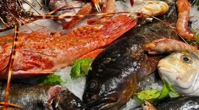 Fish&co, 'edizione speciale' alla Farm Cultural Park di Favara il 27 giugno
