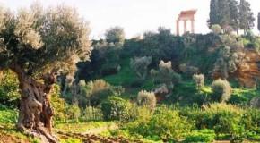 Teatri di Pietra, 'Andromaca' alla Kolymbetra di Agrigento il 26 luglio