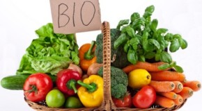Agricoltura, sbloccati i fondi per imprese bio siciliane
