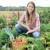 Agricoltura, Coldiretti: ad Agrigento acqua a cifre astronomiche