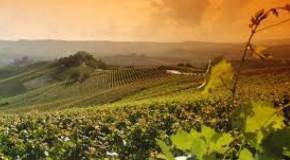 """Asti, convegno regionale ONAV: """"Ritroviamo nel vino il Patrimonio Unesco"""""""