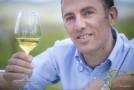 UIV, 2016 positivo per il vino italiano