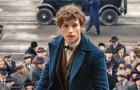 Cinema, la magia di J. K. Rowling torna a conquistare il mondo