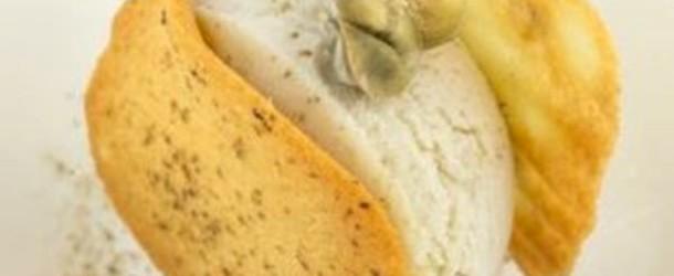 Ricette: Gelato al cappero di Salina