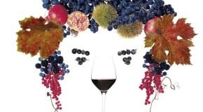 Anteprima Vini, a Lucca si presentano le nuove annate