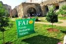 Palermo e Catania presentano le giornate FAI di primavera