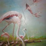 otama-fenicotteri-rosa