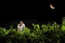 Donnafugata: musica, vino e vendemmia nella notte di San Lorenzo