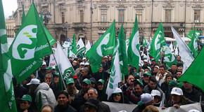 Agricoltura, il 25 gennaio a Catania assemblea elettiva congressuale provinciale Cia