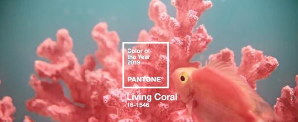 Corallo vivente è il colore dell'anno 2019